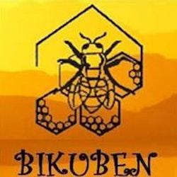 Bikuben Regionalt Brukerstyrt senter Nord-Norge logo